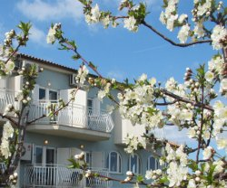 Pension Cherry Blossom, Istrien, Ližnjan